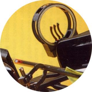 Compact modular bow Cobra