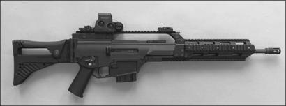 Полуавтоматическая винтовка HK243/HK293