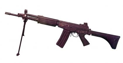 Штурмовые винтовки Аргентины